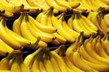 जानिए कैसे सेहत के लिए नुकसानदायक हो सकता है केला