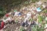 VIDEO: शिमला में गंदगी फैली हर ओर, निगम का नालों की फैंसिंग पर है जोर
