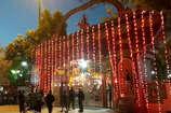 VIDEO: ईटखोरी महोत्सव में भोजपुरी अभिनेता पवन सिंह का जलवा, देखें पूरा वीडियो