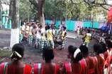 VIDEO : आदिवासी समुदाय ने धूमधाम से मनाया  'बाहा बोंगा' पर्व