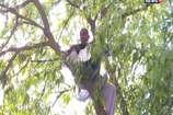 नामांकन खारिज हुआ तो पेड़ पर चढ़ गया प्रत्याशी, देने लगा फांसी लगाने की धमकी