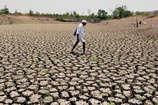 राजस्थान के नौ जिले सूखे की चपेट में, पानी पर ताला लगाकर देना पड़ रहा है पहरा