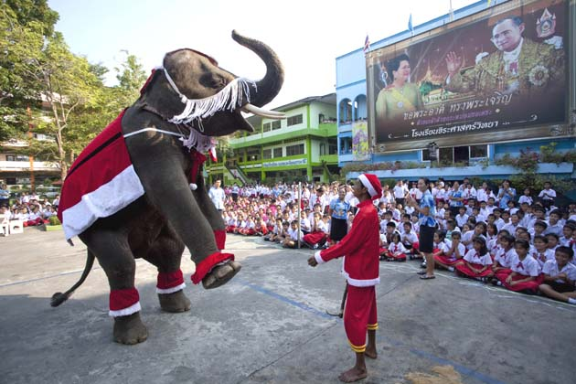 Christmas festivity in Thailand