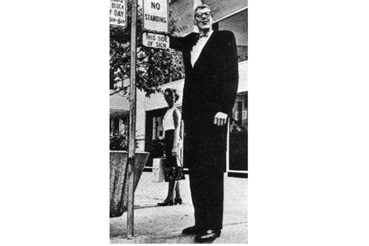 9 डॉन कोएहलर(8 फिट 2 इंच या 2.49 मीटर): डॉन कोएहलर लंबे होने के साथ ही औसत लंबी उम्र तक जिए। डॉन कोएहलर को 1970 के दशक में दुनिया का सबसे लंबा व्यक्ति आंका गया। डॉन कोएहलर की मौत 55 साल की उम्र में साल 1981 में हुई। उनकी एक जुड़वा बहन भी थी, जिसकी लंबाई सामान्य रूप से 5 फिट 9 इंच की थी।