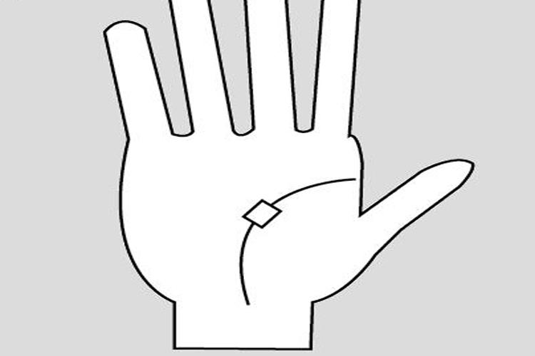 हाथ की इन 8 रेखाओं का मतलब पहचानिए