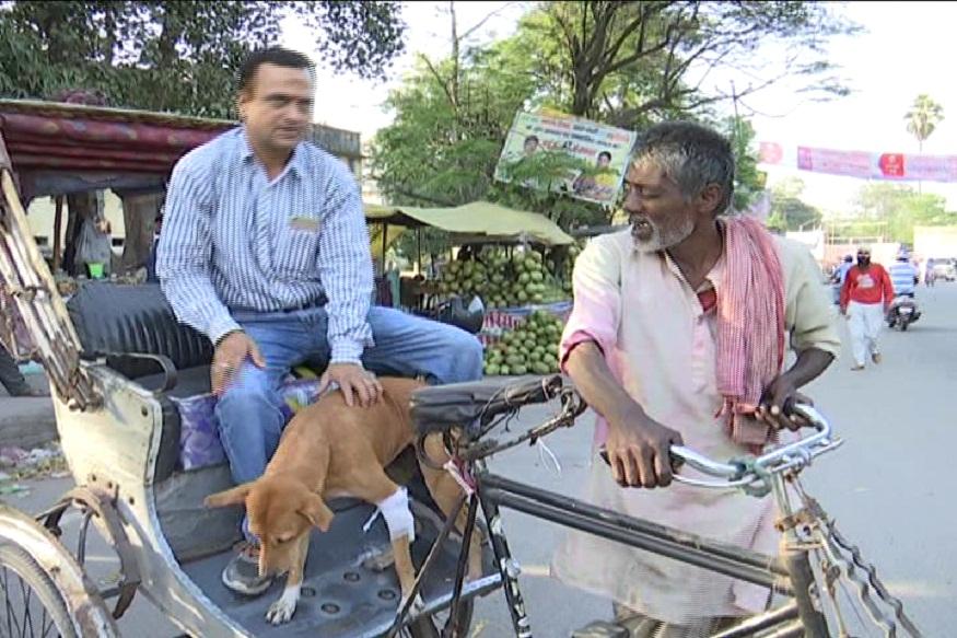 चोटिल कुत्ते को अस्पताल ले जाते सुजीत