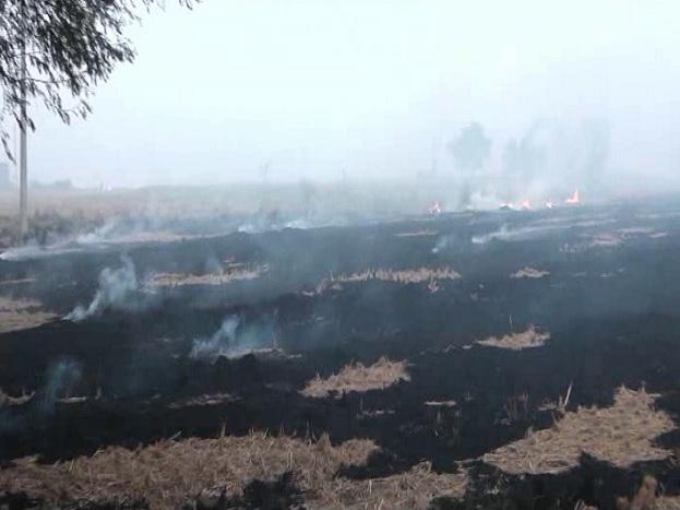 यहां किसान एक नहीं, 2 नहीं, 3 नहीं बल्कि दर्जनों एकड़ में पराली को आग के हवाले करते दिखे. जलती पराली से धुआं और प्रदूषण हल्की हवाओं के साथ शहर की तरफ फैल गया और शाम ढ़लने से पहले ही विजिबिलिटी इतनी कम हो गई.