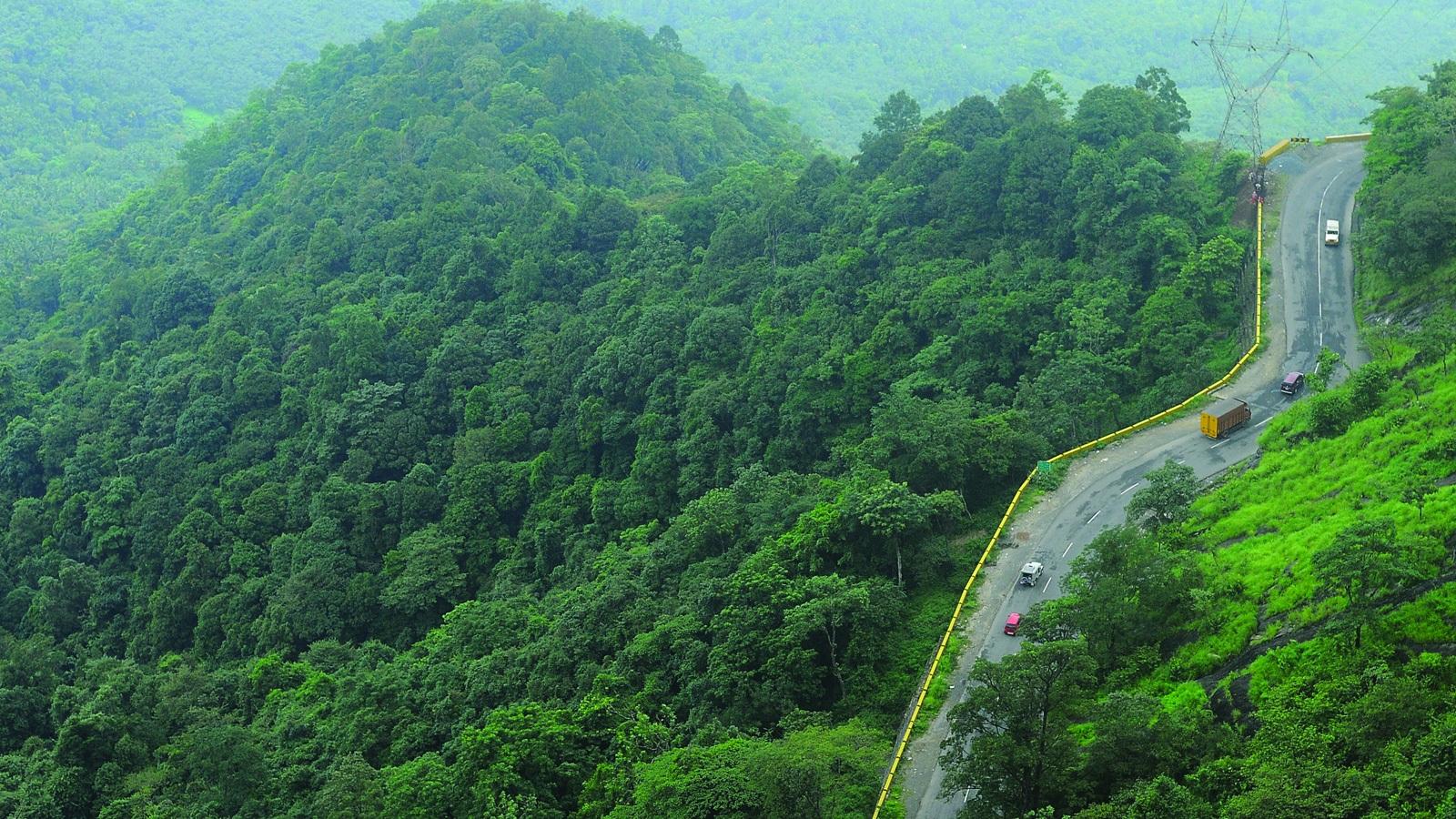 वायनाड- 'कंट्री ऑफ गॉड्स' कहा जाने वाला वायनाड स्प्रिंग सीजन में ओर भी खूबसूरत दिखाई देता है. अपनी वाइल्ड लाइफ के लिए भी मशहूर इस जगहें पर वंसत ऋतु में चारों तरफ हरियाली ही हरियाली दिखाई देती है.