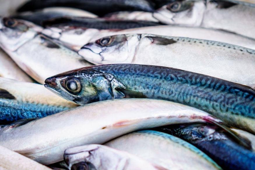इसके अलावा दूध और मछली को कभी भी साथ में नहीं खाना चाहिए. इससे गैस, एलर्जी और त्वचा संबंधित बिमारियां हो सकती हैं. दूध अपने आप में एक पूरा आहार है. इसमें विटामिन, प्रोटीन, लैक्टॉस, शुगर और मिनरल सभी तत्व पाए जाते हैं.