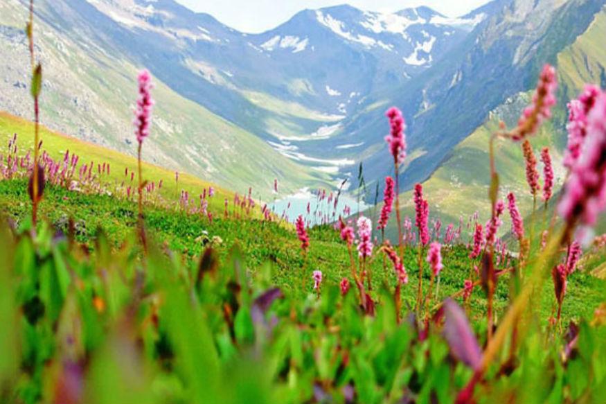 वैली ऑफ फ्लॉवर्स: हिमाचल प्रदेश की तरह पूर उत्तराखंड की भी हर जगह पर्यटकों के लिए सबसे सुंदर जगह है. लेकिन मॉनसून में वैली ऑफ फ्लॉवर्स की बात ही कुछ और है. दरअसल, फूलों की घाटी से गुजरने वाला यह ट्रेक आपके रोमांच को और बढ़ा देता है. यह बेहद ही खूबसूरत है. वैली ऑफ फ्लावर्स एक नेशनल पार्क है. यह नंदा देवी बायोस्फीयर रिजर्व के कोर ज़ोन में आता है. कुदरत ने इस जगह को बेतहाशा खूबसूरती बख्शी है. खास बात यह है कि इस ट्रैक पर 500 से ज्यादा अलग-अलग किस्मों के खूबसूरत फूल उगते हैं. यहां जून से अक्टूबर के बीच जाना सबसे शानदार मौसम होता है. ट्रेक रूट गोविंदघाट से शुरू होकर अलकनंदा नदी के किनारे से होकर घनघरिया तक 13 किमी की दूरी तक पहुंचता है. वैली ऑफ फ्लॉवर्स यूनेस्को की वर्ल्ड हेरिटेज साइट है. (Photo : uttarakhandtourism.gov.in)
