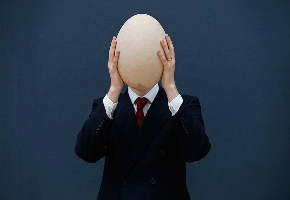 17वीं सदी से पहले मैडगैस्कर में पाए जाने वाले और अब विलुप्त हो चुके एलिफेंट बर्ड के इस अंडे की बिक्री के बाद करीब 21 लाख से 31 लाख रुपए मिलने की संभावना है.