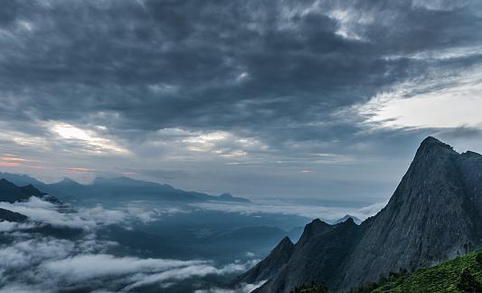 दक्षिण भारत की सबसे ऊंची चोटी मुन्नार से 10 किलोमीटर की दूरी पर ही है. एनामुडी चोटी की ऊंचाई 2695 मीटर है. यह भी सैलानियों के लिए आकर्षण का केंद्र है.