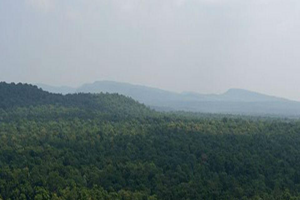 संभागीय मुख्यालय शहडोल से अनूपपुर जिले के आदिवासी बहुल गांव बीजापुरी के ओर जाने वाले लगभग 40 किलोमीटर के रास्ते में कई स्थान ऐसे आते हैं, जहां दो पहाड़ों के बीच से निकलती सड़क पर एक साथ दो वाहन भी नहीं गुजर सकते. कुछ पल के लिए तो ऐसे लगता है, जैसे पहाड़ ही हमारे ऊपर आ गया हो!