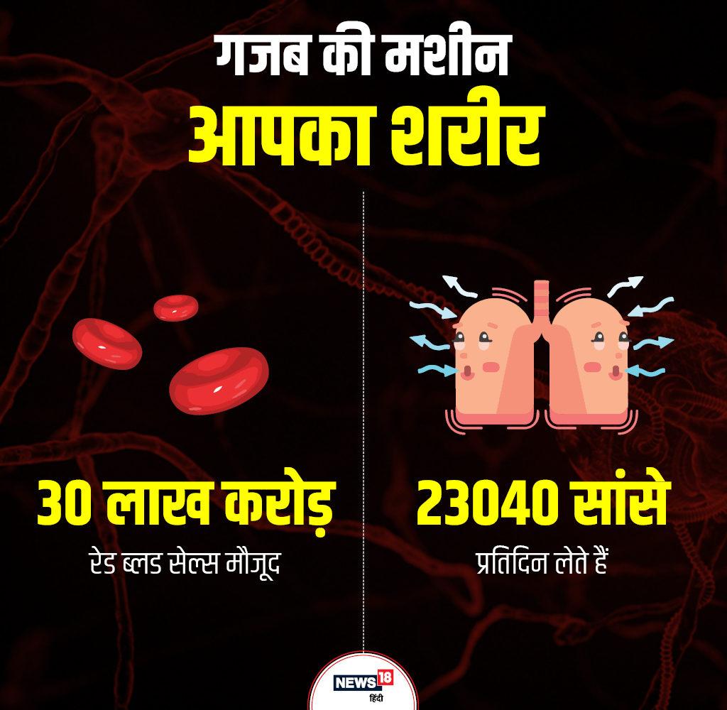 इंसान एक दिन में 23040 बार सांस लेता है. जबकि 115200 बार उसका दिल धड़कता है.