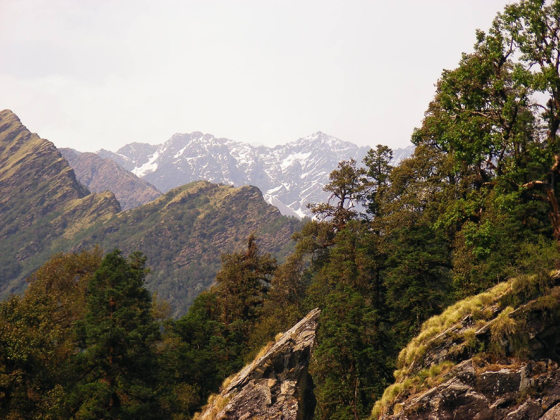 उत्तराखण्ड में पहाड़ों की गोद में बसा छोटा सा गांव कल्प निहायत ही खूबसूरत और आकर्षक है. कह सकते हैं सुकून की तलाश यहां आकर खत्म होती है. समुद्र तल से 7500 फीट की ऊंचाई पर बसा ये गांव प्राकृतिक सुंदरता से भरपूर है और सैलानियों के लिए विशेष आकर्षण का केंद्र भी है.