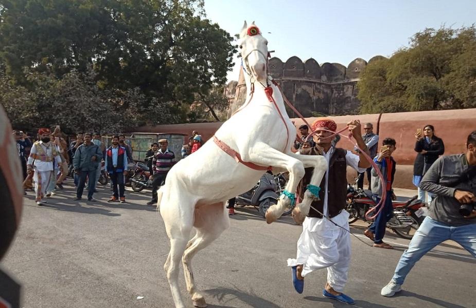 रंग-बिरंगे इस मरू पर्व में लोगों का उत्साह देखते ही बनता है. राजस्थानी गीतों की धुनों पर पर्यटक थिरकते हुए नजर आते हैं.