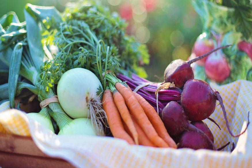 सर्दियों का एक ऐसा सीजन होता है जिसमें मार्केट में सबसे ज्यादा हरी सब्जियां आती हैं. सेहत के लिए भी ये काफी फायदेमंद होती हैं. और इन सब्जियों के सेवन से आप मोटापा भी कम कर सकते हैं. जानिए कैसे.