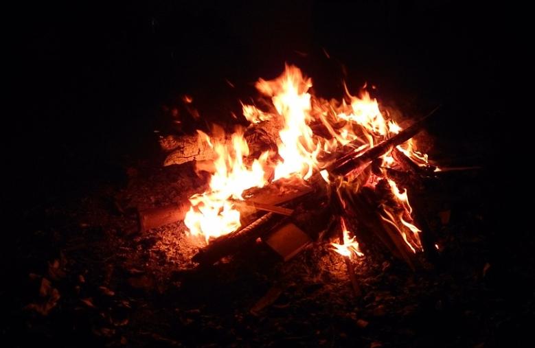 फसल की बुआई और कटाई से जुड़ा ये त्यौहार पंजाब में जोर-शोर से मनाया जाता है. पंजाब में नई फसल की पूजा की जाती है. यह त्यौहार पूस की आखिरी रात और माघ की पहली सुबह की कड़क ठंड को कम करने के लिए भी मनाया जाता है.