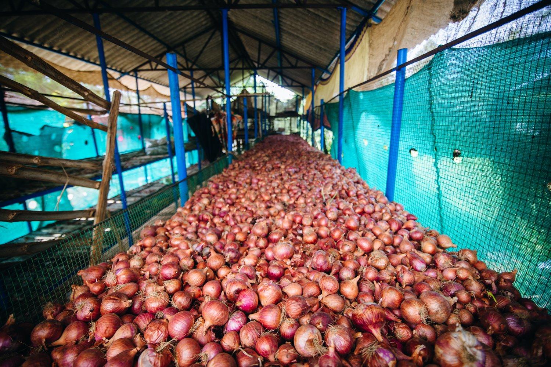 farmers, farmers income, kisan, narendra modi, Doubling of Farmers Income, ashok dalwai committee for doubling farmers income by 2022, agriculture grouth, budget 2019, bank, ministry of agriculture cooperation and farmers welfare, loksabha, loksabha election 2019, NSSO, NABARD, National Bank For Agriculture And Rural Development, किसान, किसानों की आय, नरेंद्र मोदी, किसानों की आय दोगुनी करना, किसानों की आय 2022 तक दोगुनी करने के लिए बनी अशोक दलवाई समिति, कृषि विकास, बजट 2019, बैंक, कृषि मंत्रालय, किसान कल्याण, लोक सभा, लोकसभा चुनाव 2019, एनएसएसओ, नाबार्ड, नेशनल बैंक फॉर एग्रीकल्चर एंड रूरल डेवलपमेंट