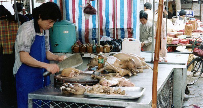 Lychee और डॉग मीट फेस्टिवल- ये फेस्टिवल चीन में, गर्मियों में मनाया जाता है. इस त्यौहार के दौरान चीनी लोग कुत्तों को मारकर खाते हैं. ये वार्षिक महोत्सव चीन के Yulin और Guangxi शहरों में मनाया जाता है. ये त्यौहार 2009 से मानाया जाना शुरू हुआ और दस दिनों तक चला. जिस दौरान अनुमान लगाया गया कि 10 से 15,000 कुत्ते खाए गए.(सभी तस्वीरें- सांकेतिक)