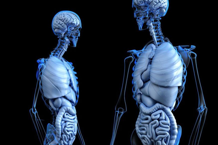 आयुर्वेद में खाने से जुड़े ज्यादातर सिद्धांत पाचन के इर्द-गिर्द घूमते हैं. क्योंकि पाचन से स्वास्थ्य के कई पहलू बंधे होते हैं. आयुर्वेद कहता है दोपहर के भोजन के समय पाचन अग्नि अधिकतम होती है. दरअसल आयुर्वेद में पाचन तंत्र को अग्नि के समान माना जाता है.