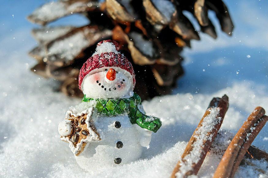 जिन जानवरों को बहुत ज्यादा ठंड लगती है वे सर्दियों के मौसम में हाइबरनेशन (सुप्तावस्था) में भी चले जाते हैं. यानी सुस्ती में जाड़ा बिताते हैं. वे ज्यादा ठंड के वक्त पेट में खाना इकट्ठा कर सो जाते हैं.(सभी तस्वीरें: सांकेतिक)