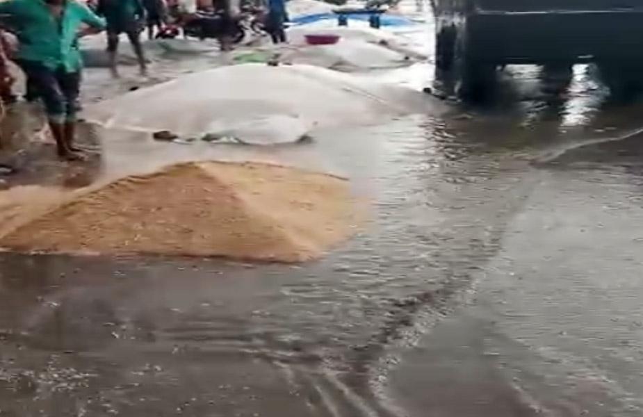 ऐसे में बिगड़े मौसम के कारण फसलों के नुकसान होने का वीडियो खूब वायरल हो रहा है.