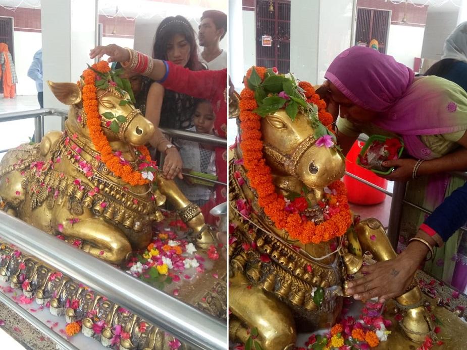 बड़ी संख्या में भक्तों, विशेषकर महिलाओं ने बिल्वकेश्वर महादेव मंदिर में आकर पूजा की. यहां नंदी की पूजा की भी विशेष मान्यता है.