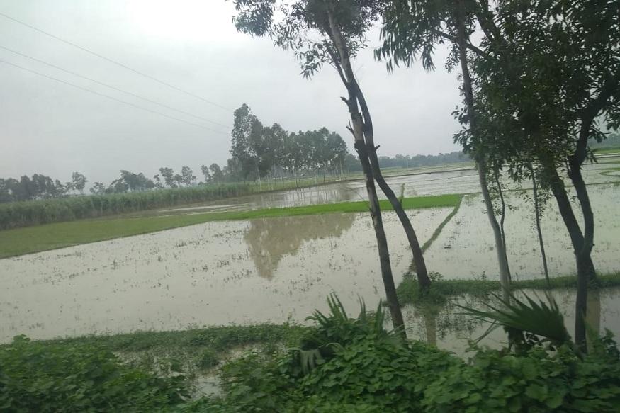 बांग्लादेश में बाढ, Flood situation in bangladesh