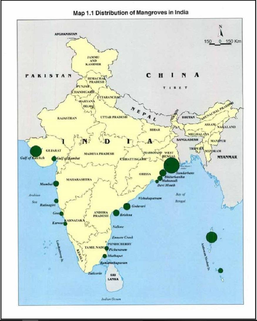 odisha cyclone, fani cyclone impacts, coastal areas india, coastal plantation, coastal development, ओडिशा तूफान, फानी तूफान का नुकसान, भारत के तटीय इलाके, समुद्री वनस्पति, तटों का विकास