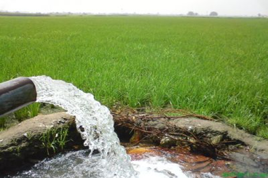 punjab water crisis ground water levels drop alarmingly agriculture sector suffered farmers has bad time