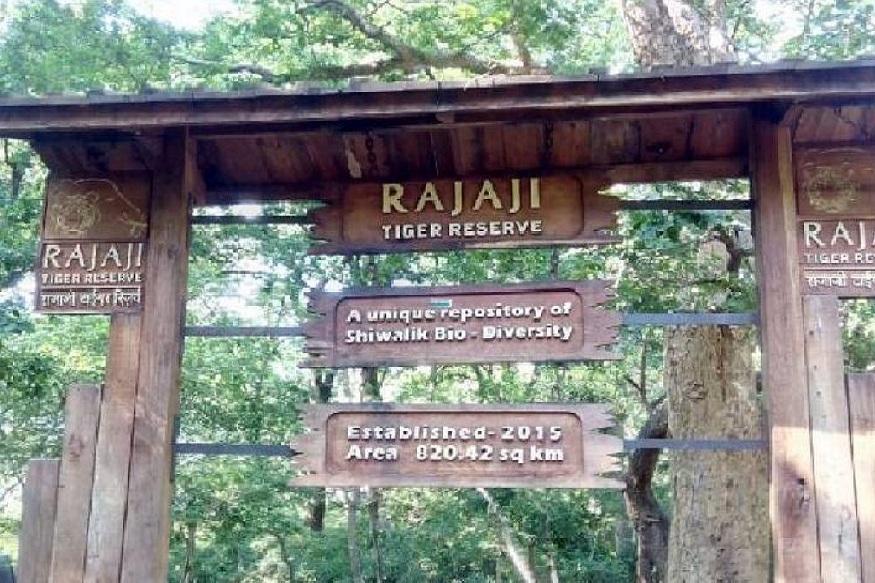 राजाजी नेशनल पार्क से लगे इलाकों में घूम रहे आदमखोर तेंदुए
