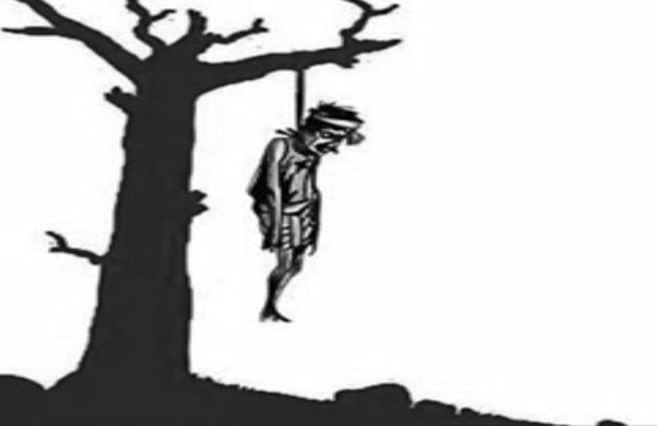किसान आत्महत्या, Farmer suicides
