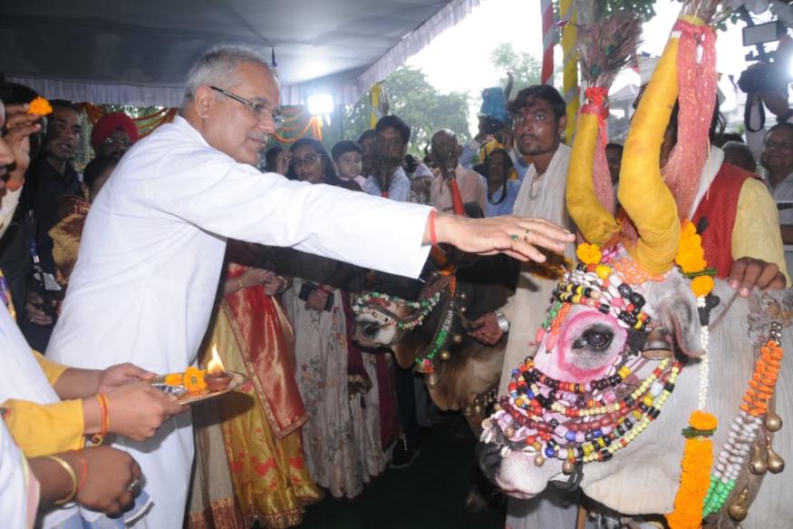 chhattisgarh- raipur- cm bhupesh baghel- pola celebration in cm house- pola celebration in chhattisgarh- pola celebration in raipuir cm house- छत्तीसगढ़- रायपुर- पोला त्यौहार- पोला पर्व- सीएम भूपेश बघेल- सीएम हाउस में पोला पर्व- रायपुर सीएम हाउस में पोला पर्व