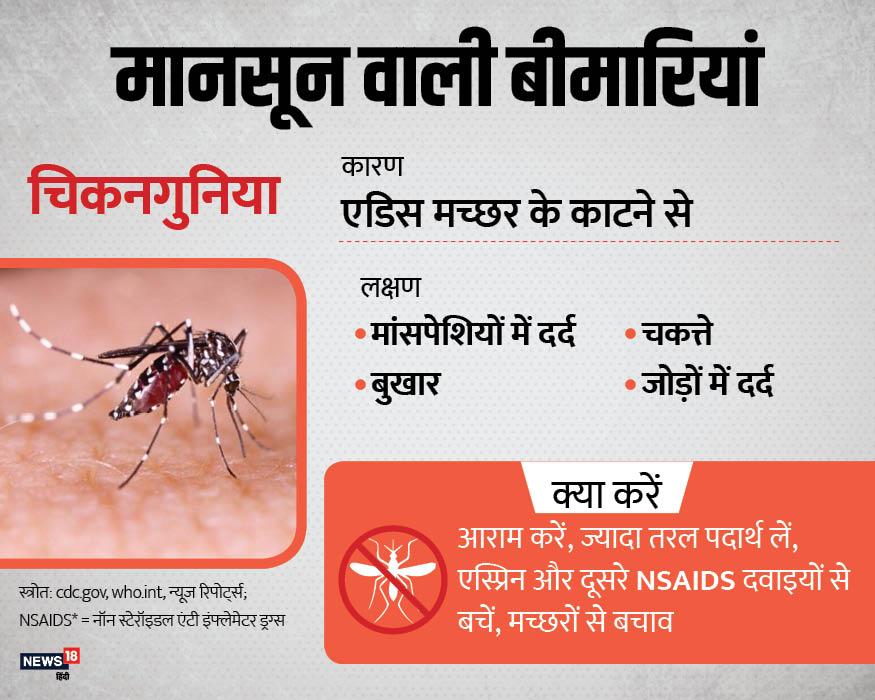 डेंगू के अलावा बारिश के मौसम में होने वाली बीमारी चिकनगुनिया है. ये भी एडिस मच्छर के काटने से होती है. इसमें हड्डियों और जोड़ों में तेज दर्द होता है.