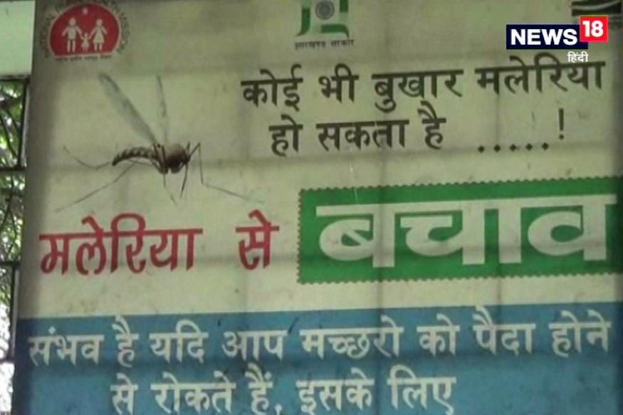 uttarakhand, dehradun, dengue, larvae, health department uttarakhand, patients, उत्तराखंड, देहरादून, डेंगू, लार्वा, स्वास्थ्य विभाग उत्तराखंड, मरीज़
