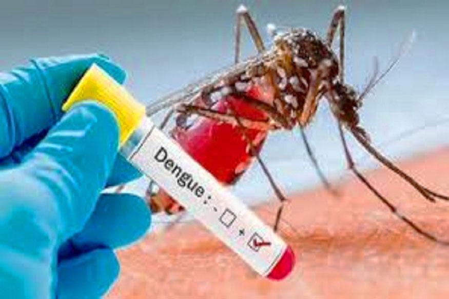 डेंगू-dengue