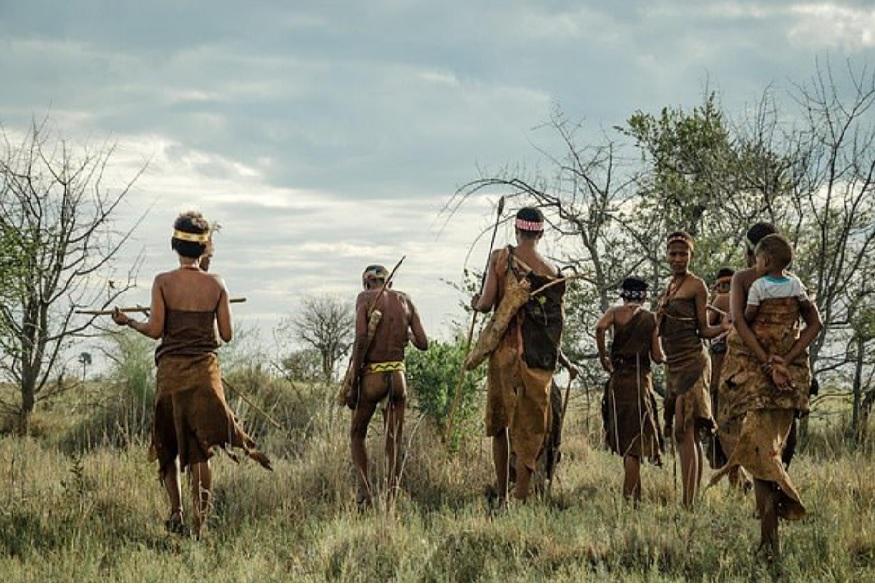 Botswana Tribe