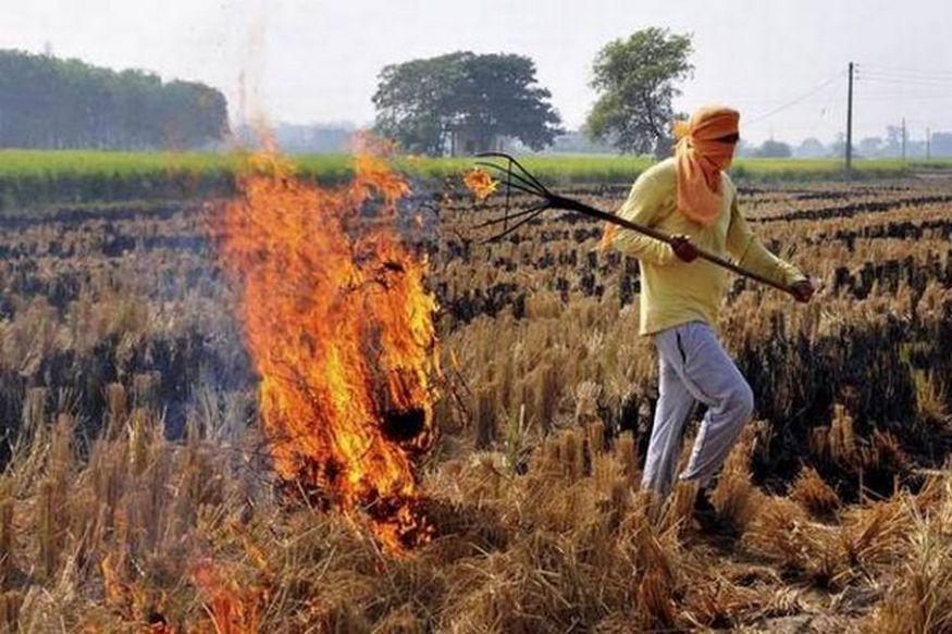 parali burning in haryana, farmers, parali burning in Punjab, Stubble burning, pollution in delhi, agriculture, हरियाणा में पराली जलाने के मामले, किसान, पंजाब, पराली, दिल्ली में प्रदूषण, कृषि, धान की फसल, Paddy Crop, पेड्डी स्ट्रा चोपर, Paddy Straw Chopper Machine, दिल्ली में वायु प्रदूषण, Delhi Air Pollution
