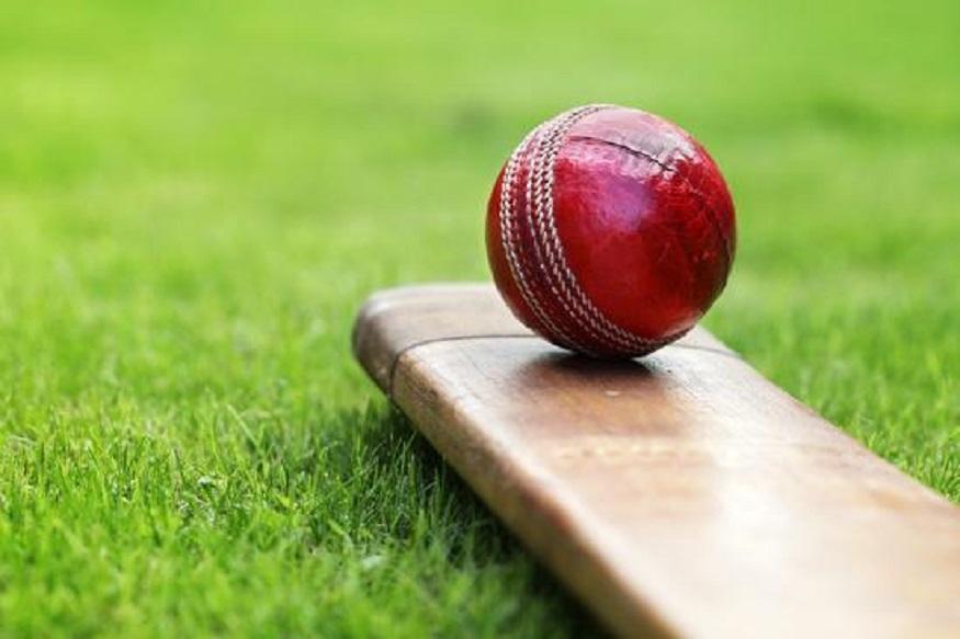 cricket, cricket news, sports news, cricket south africa, south africa cricket team, cobras cricket team, csa, team selection, black African players, क्रिकेट, क्रिकेट न्यूज, स्पोर्ट्स न्यूज, क्रिकेट साउथ अफ्रीका, सीएसए, साउथ अफ्रीका क्रिकेट टीम, कोबराज, कोबराज क्रिकेट टीम, टीम सेलेक्शन, ब्लैक अफ्रीकन प्लेयर्स