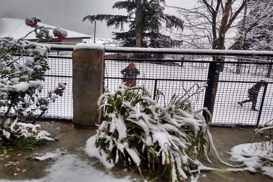 शिमला के कुफरी में गिरी बर्फ.