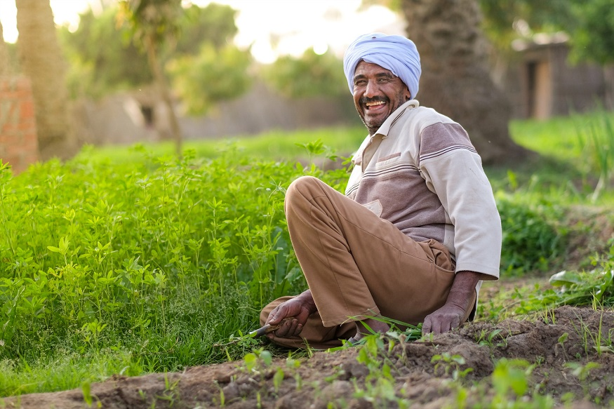 Budget 2020, Agriculture budget 2020, farming, Kisan credit card, 16 point action plan for farmers, loan waiver, kisan train, agricultural credit target, बजट 2020, कृषि बजट 2020, खेती-किसानी, किसान क्रेडिट कार्ड, किसानों के लिए 16 प्वाइंट एक्शन प्लान, कृषि कर्ज माफी, किसान ट्रेन, कृषि कर्ज का टारगेट