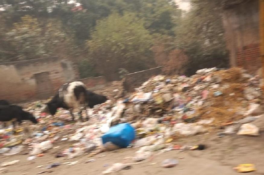 Delhi Assembly Election 2020, Delhi Assembly Election, BJP, AAP, Congress, madipur constituency, girish soni, आम आदमी पार्टी, दिल्ली विधानसभा चुनाव 2020, दिल्ली विधानसभा चुनाव, भाजपा, आप, कांग्रेस, मादीपुर विधानसभा, मादीपुर निर्वाचन क्षेत्र, अरविंद केजरीवाल, गिरीश सोनी delhi assembly election 2020 chaupal aap will also put a hattrick on madipur seat for congress bjp arvind kejriwal nodrss