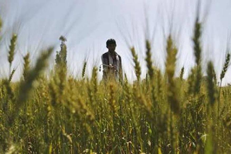 Model Contract Farming act 2018, मॉडल कांट्रैक्ट फार्मिंग एक्ट, modi government, मोदी सरकार, new steps for farmers welfare, किसान कल्याण के लिए सरकार के नए कदम, risk management in agriculture, कृषि में जोखिम मैनेजमेंट, zero risk agriculture, बिना जोखिम वाली खेती, potato farmer, आलू किसान, Onion farmer, प्याज किसान, tomato kisan टमाटर किसान, narendra modi, नरेंद्र मोदी, Tamil Nadu, तमिलनाडु, Punjab, पंजाब