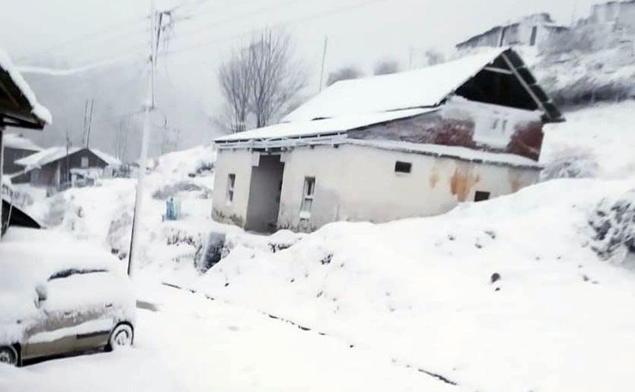 शिमला के खड़ापत्थर में गिरी बर्फ.