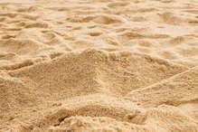 रेत माफियाओं पर सख्त हुआ प्रशासन, डेढ़ महीने में 170 से अधिक पर कार्रवाई
