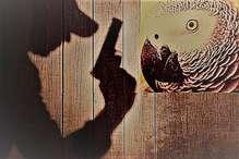 उस कत्ल की कहानी, जिसमें तोते की गवाही से कातिल तक पहुंची तफ्तीश