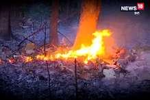 VIDEO : फायर सीजन: कुमाऊं के जंगलों में 70 बार लग चुकी आग, करोड़ो की संपत्ति खाक