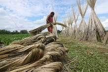 महिलाओं की जिंदगी में बदलाव देखने कोटा नगर निगम पहुंची असम की टीम
