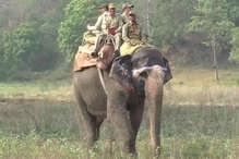 PHOTOS: कॉर्बेट नेशनल पार्क में हाथियों से की जा रही गश्त